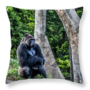 Throw Pillow featuring the photograph Lonely Gorilla by Joann Copeland-Paul