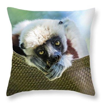 Lonely Lemur Throw Pillow