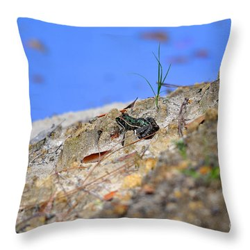 Throw Pillow featuring the photograph Lonely Leopard by Al Powell Photography USA