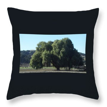Lonely On The Back Roads Throw Pillow