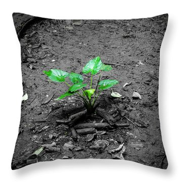 Lonely Plant Throw Pillow