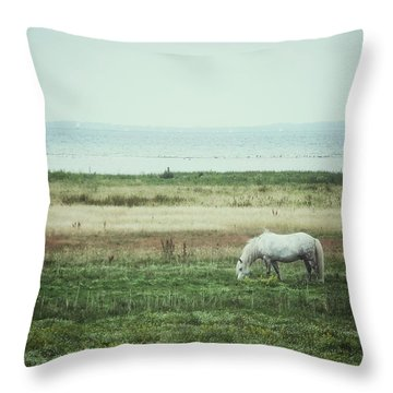 Throw Pillow featuring the photograph Lonely Pony by Karen Stahlros