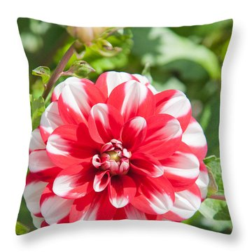 Throw Pillow featuring the photograph Lonely Red by Matthew Bamberg