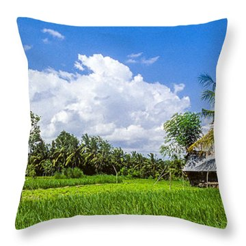 Throw Pillow featuring the photograph Lonely Rice Hut by T Brian Jones