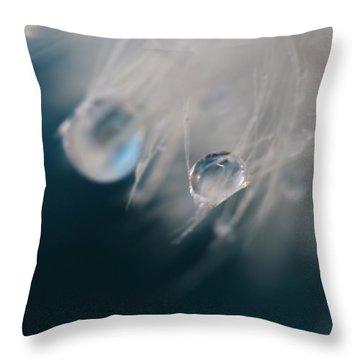 Throw Pillow featuring the photograph Lonely Teardrops by Amy Tyler