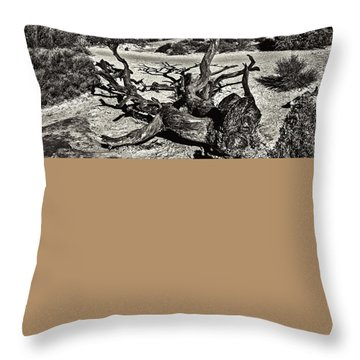 Lonely Tree #4  Throw Pillow by Alex Galkin