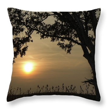 Lonely Tree At Sunset Throw Pillow