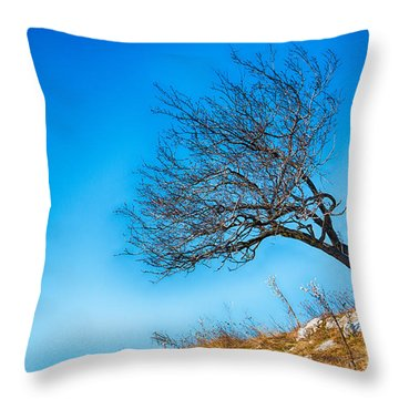 Lonely Tree Blue Sky Throw Pillow