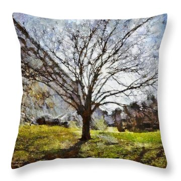 Throw Pillow featuring the painting Lonely Tree by Derek Gedney