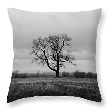 Lonely Tree In A Spring Field Throw Pillow
