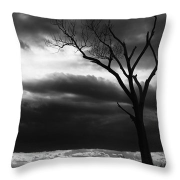 Throw Pillow featuring the photograph Lonely Tree In Monochrome by Ricky L Jones