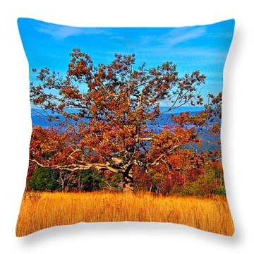 Lonely Tree Skyline Drive Va Throw Pillow