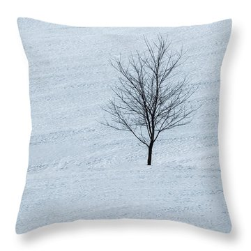 Throw Pillow featuring the photograph Lonely Tree by Tom Singleton