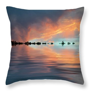 Lonesome Bird Throw Pillow by Jerry McElroy