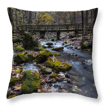 Lonesome Bridge Throw Pillow