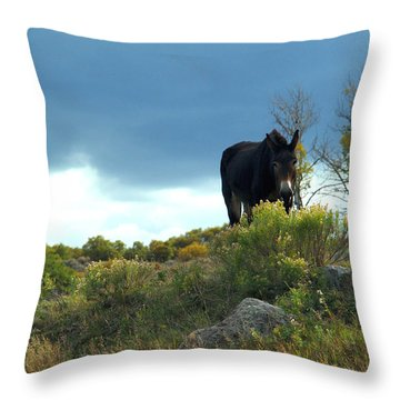Lonesome Donkey Throw Pillow
