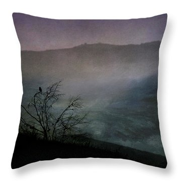 Lonesome Point Throw Pillow