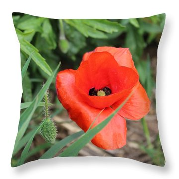 Lonesome Poppy Throw Pillow