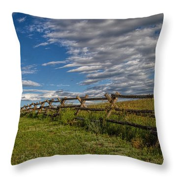 Lonesome Road Throw Pillow by Alana Thrower
