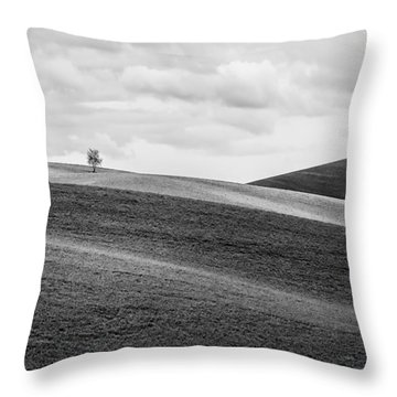Lonesome Throw Pillow by Ryan Manuel