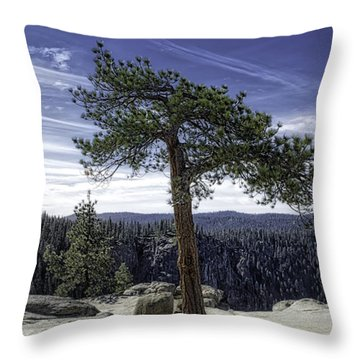 Throw Pillow featuring the photograph Lonesome Tree by Chris Cousins