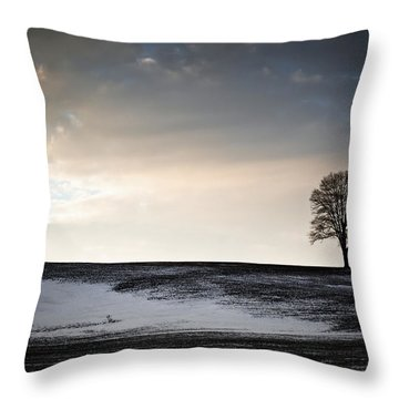 Lonesome Tree On A Hill IIi Throw Pillow