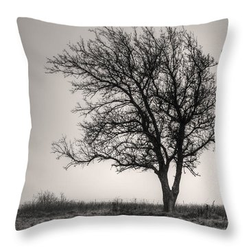 Throw Pillow featuring the photograph Lonesome Tree by Tamyra Ayles