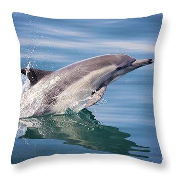 Long Beaked Common Dolphin Throw Pillow