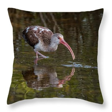Long-billed Curlew - Male Throw Pillow
