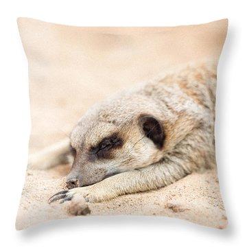 Long Day In Meerkat Village Throw Pillow