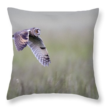 Long Eared Owl Hunting At Dusk Throw Pillow