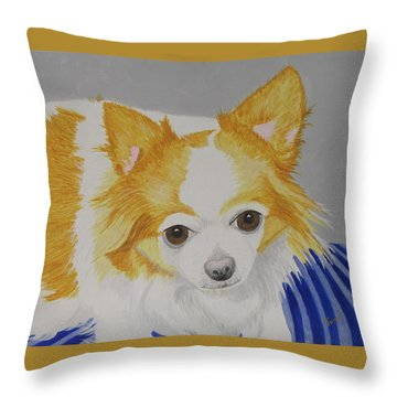 Long-haired Chihuahua Throw Pillow by Hilda and Jose Garrancho