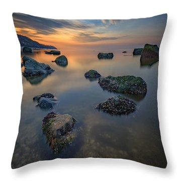 Long Island Sound Tranquility Throw Pillow by Rick Berk