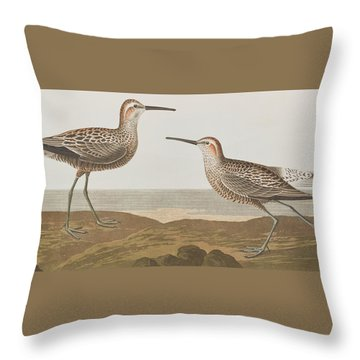 Long-legged Sandpiper Throw Pillow by John James Audubon