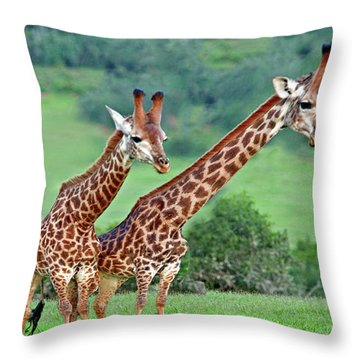 Long Necks Together Throw Pillow by Bruce Iorio