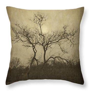 Long Pasture Wildlife Perserve. Throw Pillow