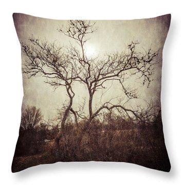 Long Pasture Wildlife Perserve 2 Throw Pillow