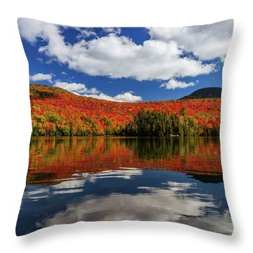 Long Pond And Clouds Throw Pillow