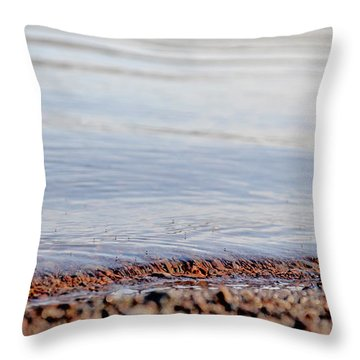 Long Pond Throw Pillow by Donna Petersen