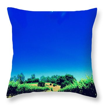 Long Road Throw Pillow by Gillis Cone