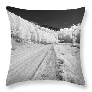 Throw Pillow featuring the photograph Long Road In Colorado by Jon Glaser