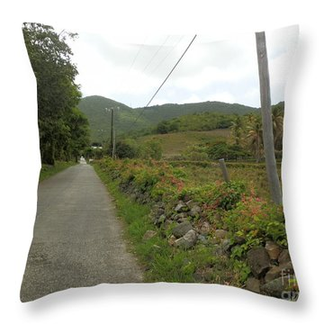 Long Road Into Colombier Throw Pillow