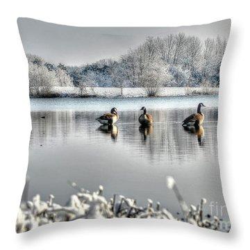 Geese At Long Run Pond Throw Pillow