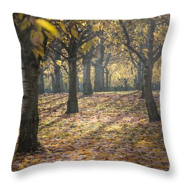 Long Shadow Throw Pillow