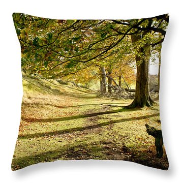 Long Shadows Of The Afternoon Throw Pillow