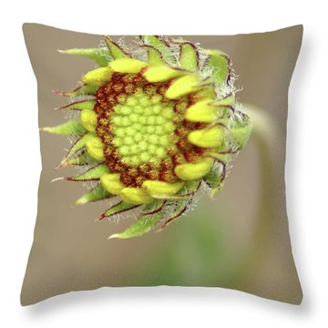 Long Stemmed Beauty Throw Pillow