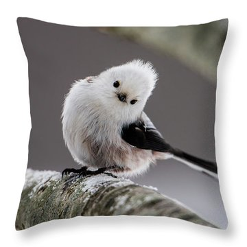 Throw Pillow featuring the photograph Long-tailed Look by Torbjorn Swenelius