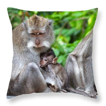 Long Tailed Macaques Throw Pillow by Cassandra Buckley