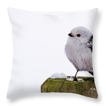 Long-tailed Tit On The Pole Throw Pillow by Torbjorn Swenelius