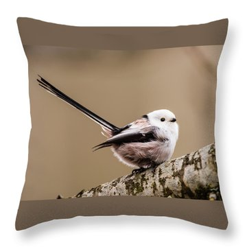 Long-tailed Tit Wag The Tail Throw Pillow by Torbjorn Swenelius